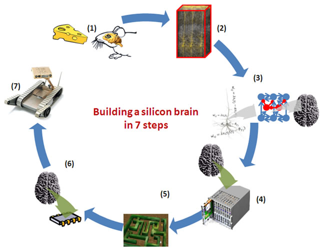 Building a silicon brain in in seven steps.
