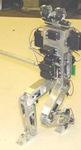 Biomorhic Humanoid Robotics from Iguana Robotics, Inc.