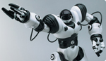 Robosapien™ Biomorphic Robotics from WowWee Group Limited.