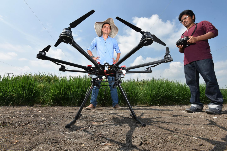 Analyzing Drone Images to Understand How Root Crops Respond to Drought