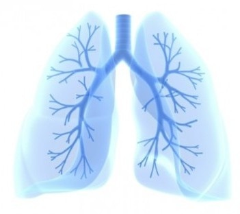 Google, Northwestern Scientists Design AI System Capable of Detecting Lung Cancer Before Radiologists