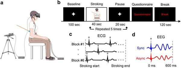 Virtual Reality Experiment Shows That Bodily Self-Consciousness Involves the Brain Monitoring Heartbeat