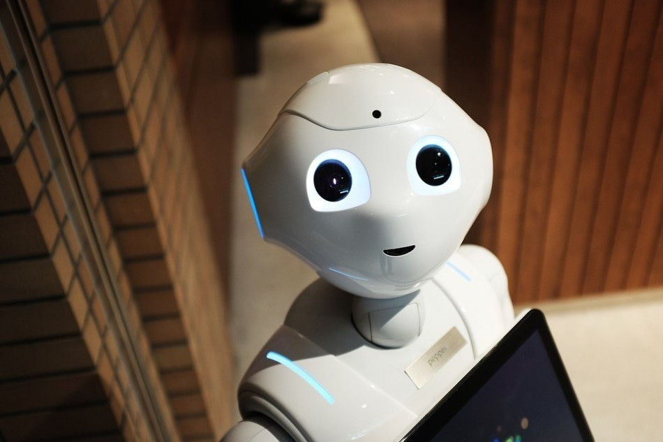 Humanoid Robots Unlikely to Resemble Human Beings