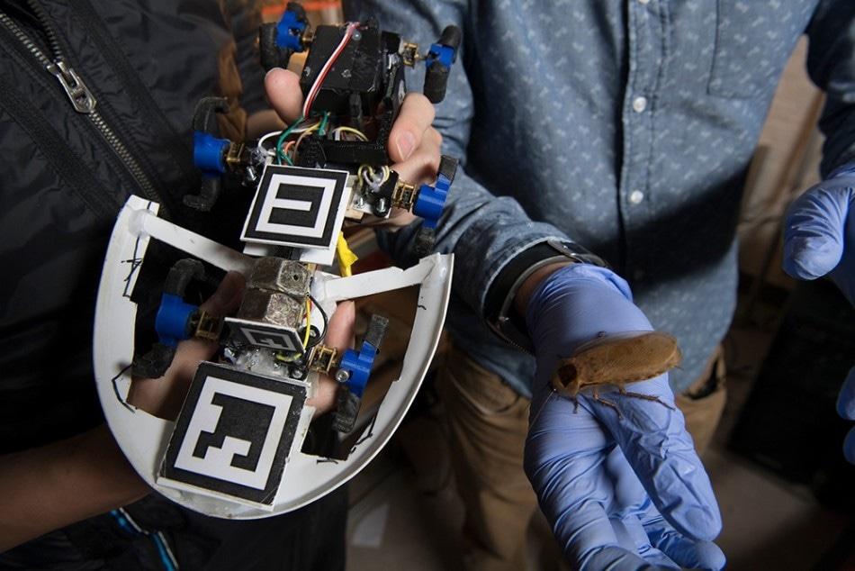 Multi-Legged Robot to Replicate Cockroach Locomotion