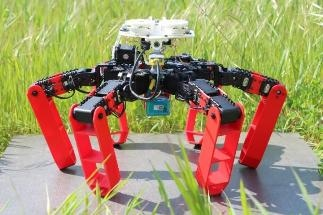 Innovative Robot Mimics Exceptional Navigation Capacities of Desert Ants
