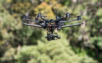 New Method Uses Drones and IR Imaging to Detect Koala Populations