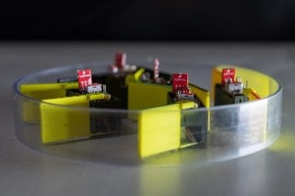 New Method for Developing Robots from Smarticles