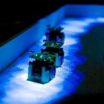 Scientists Replicate Behaviour of Ants with Miniature Robots